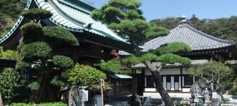 Japan 2013 598 (480x215)